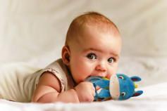 LUDI Jucarie senzoriala BABY DONKEY