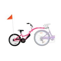 Bicicleta Co-Pilot Roz WeeRide WR06PK